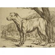 20170531-galerie-seydoux-estampes-0904